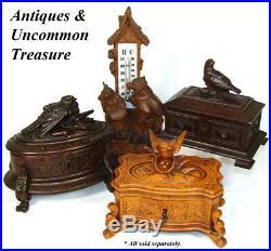 Antique Black Forest Carved 5.5 Jewelry Casket, Box Flowers, Foliage & Bird